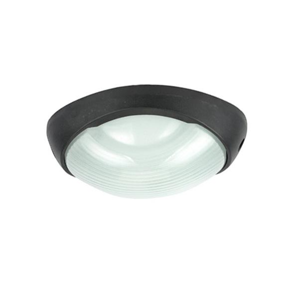 Потолочный светильник уличный Urban A2047PF-1BK Arte Lamp