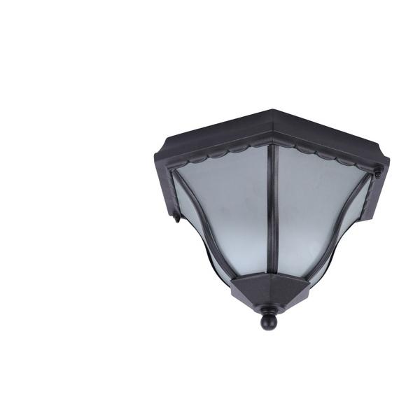 Потолочный светильник уличный Lanterns A1826PF-2BK Arte Lamp