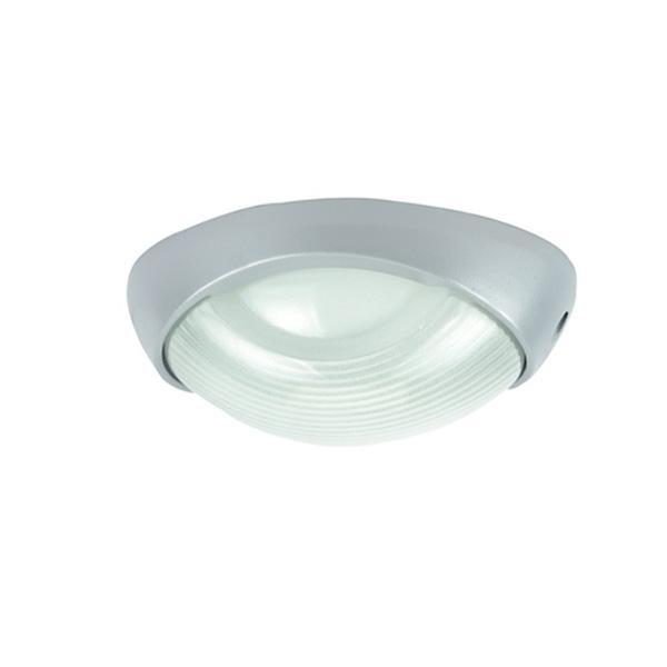 Потолочный светильник уличный Urban A2047PF-1GY Arte Lamp